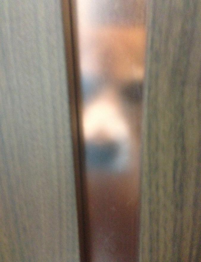 泊まる部屋のドアから熱い視線