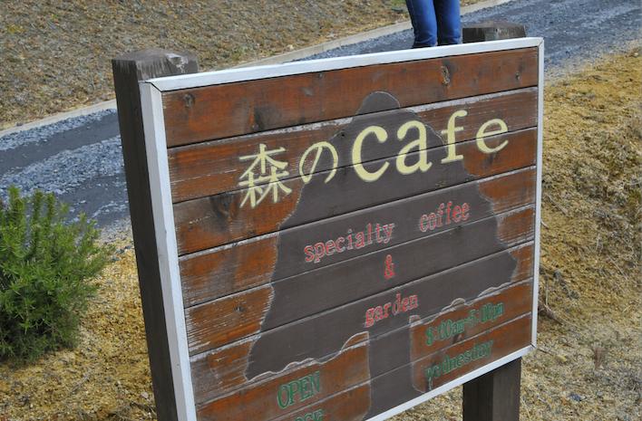 幻だった森のカフェツーリング★