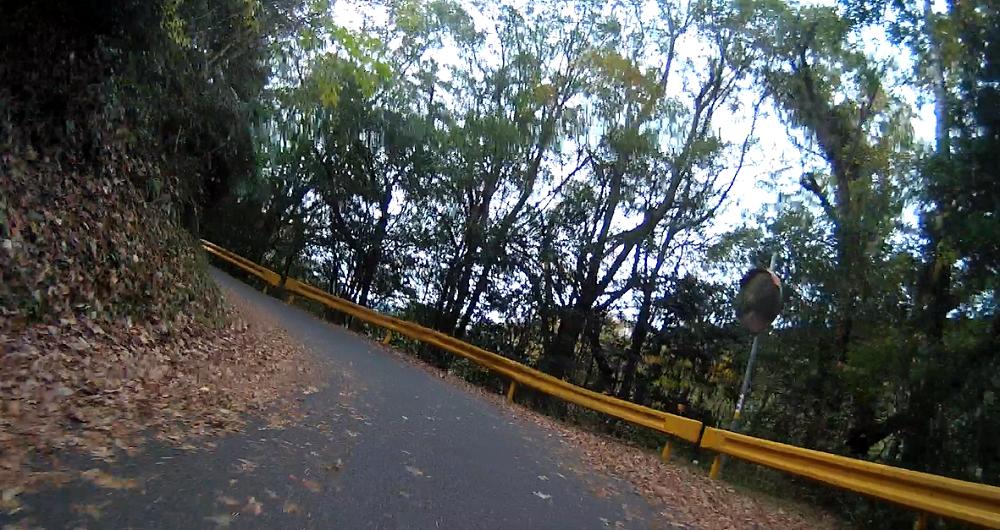 山口県のガードレールは黄色い