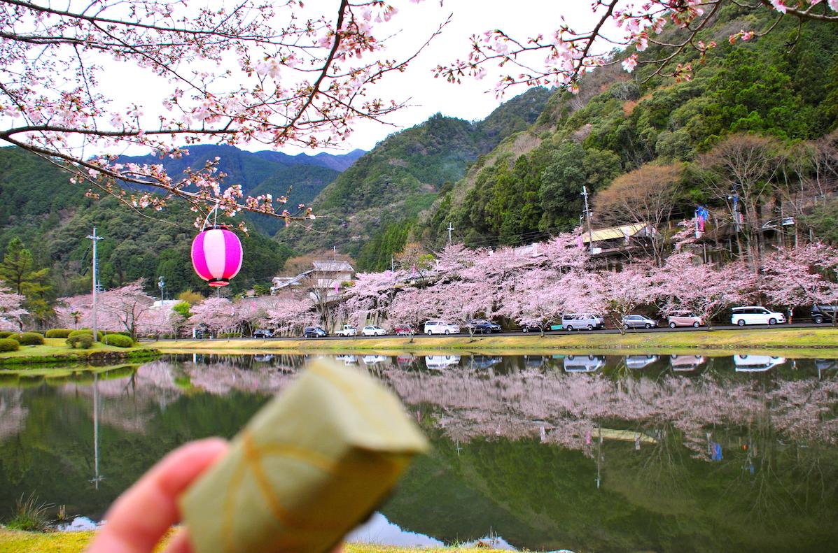 花より柿の葉寿司
