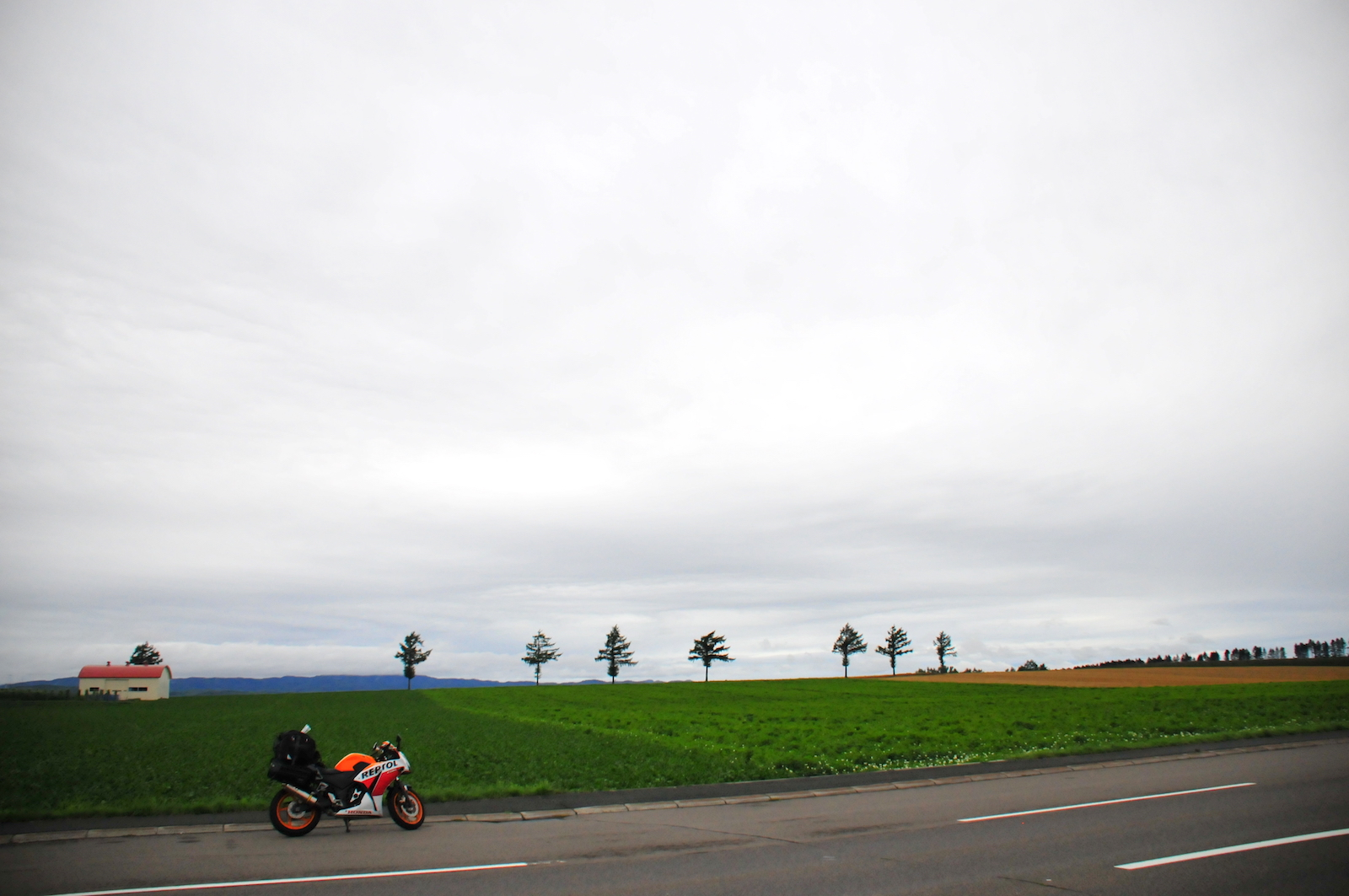 曇天メルヘンの丘