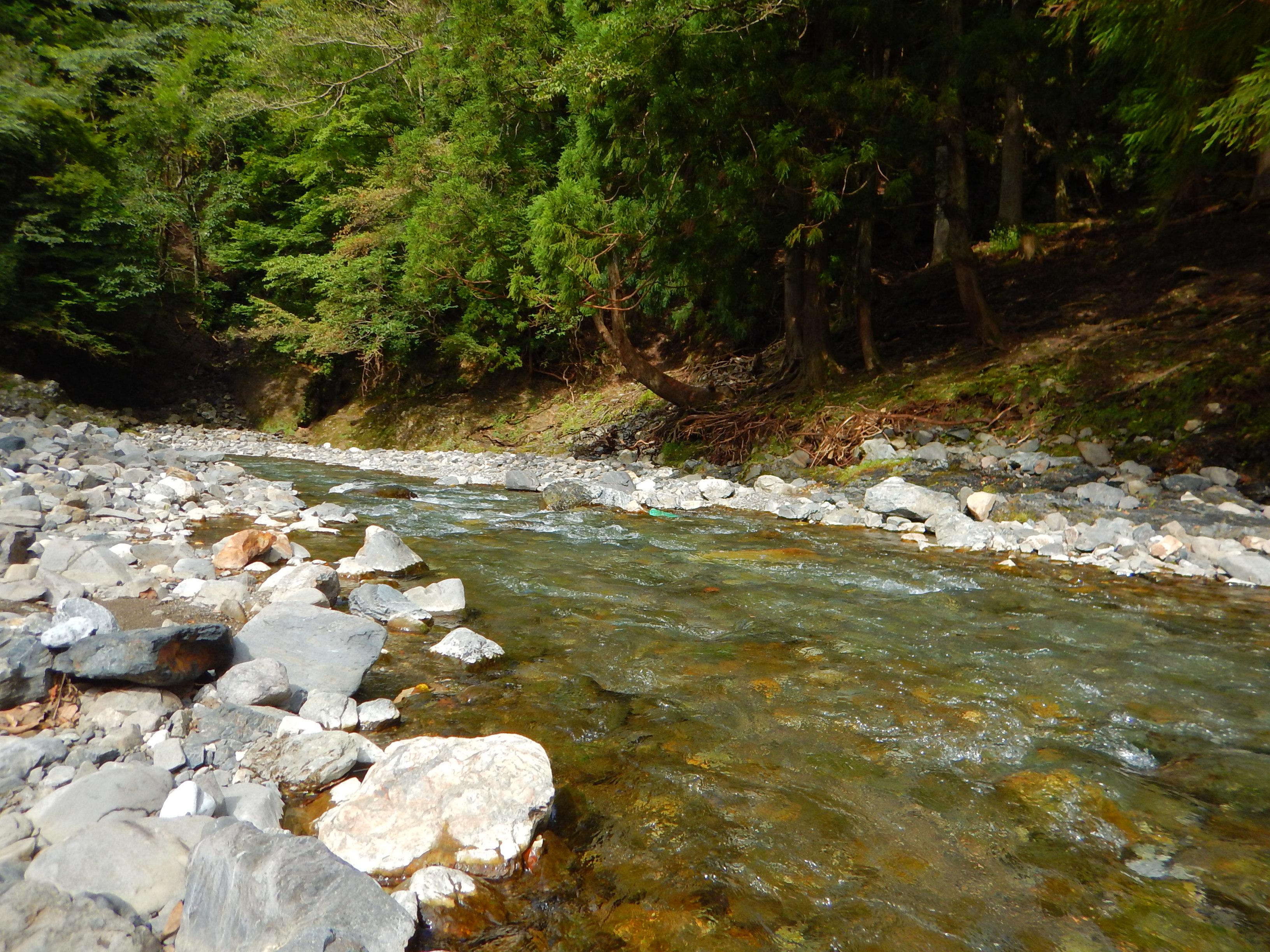 きれいな川があった